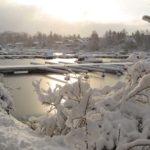 Nature as Swedish Christmas inspiration?