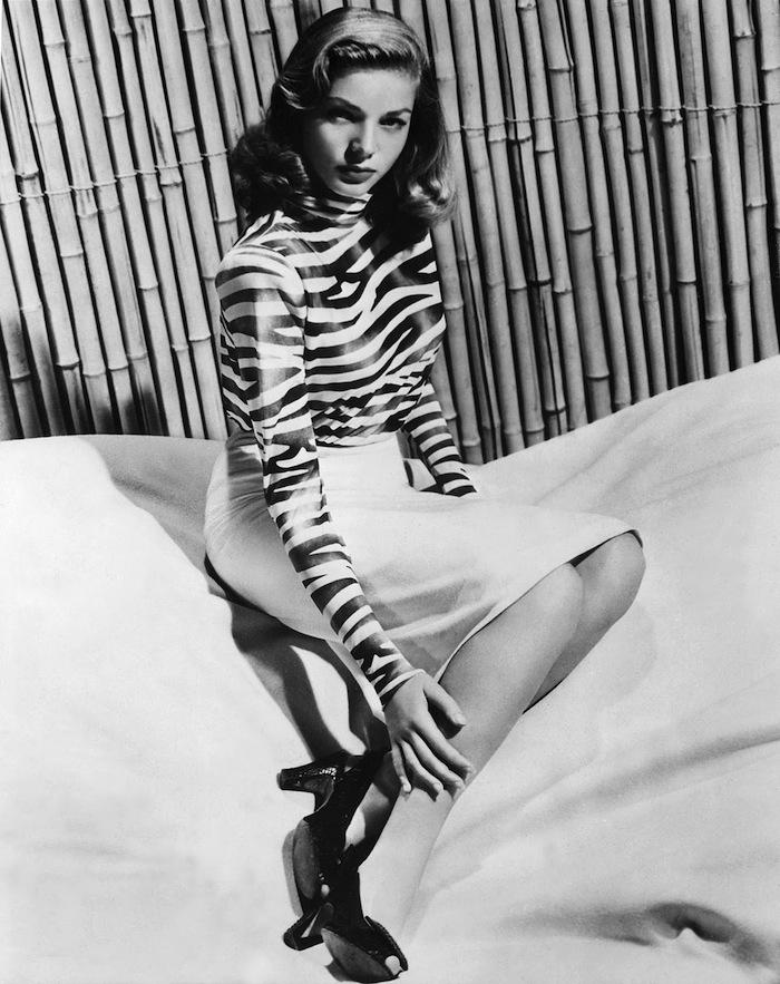Bacall-zebra-sitting