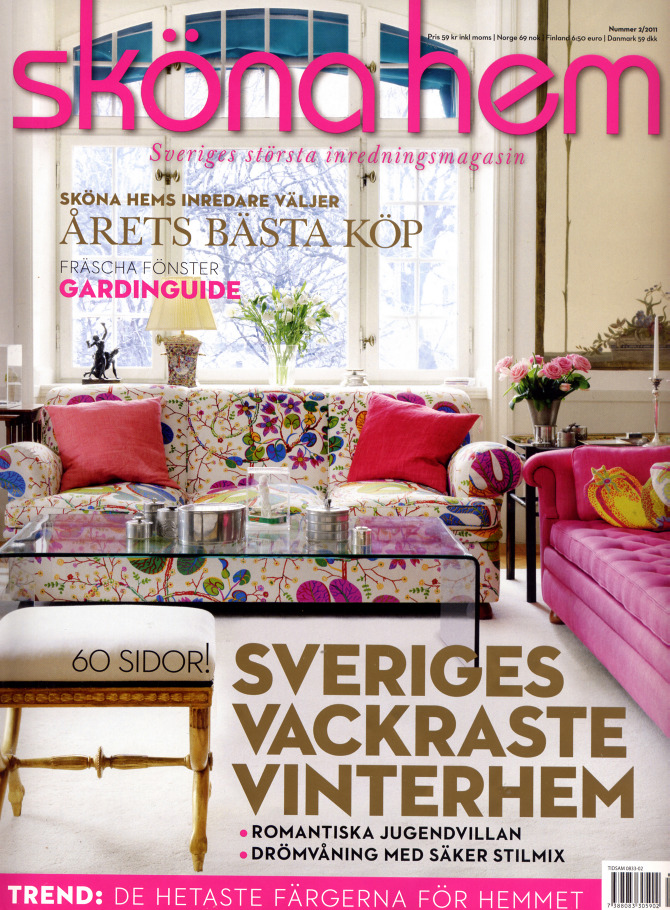 skonahem_cover_feb11